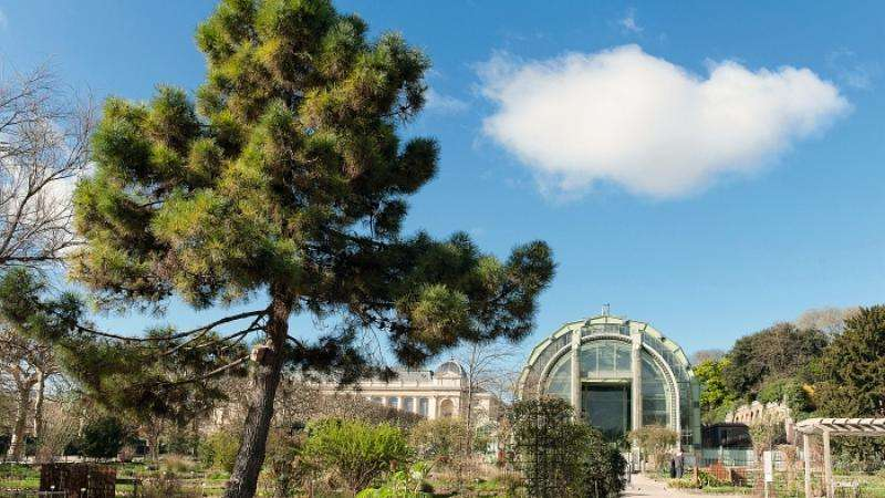 The most important Botanical Garden in France